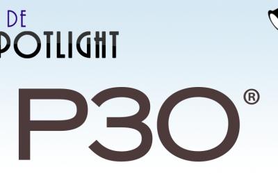 Boek tip: OGC Portfolio, Programme and Project Offices: P3O