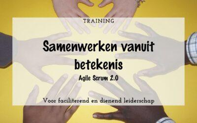Training: Agile Scrum 2.0 Samenwerken vanuit betekenis