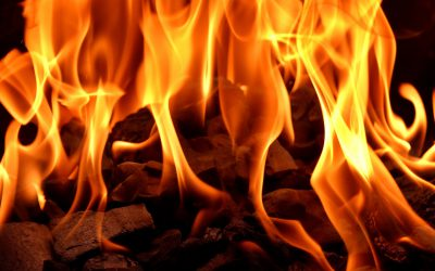 Vuur in je  organisatie nodig?