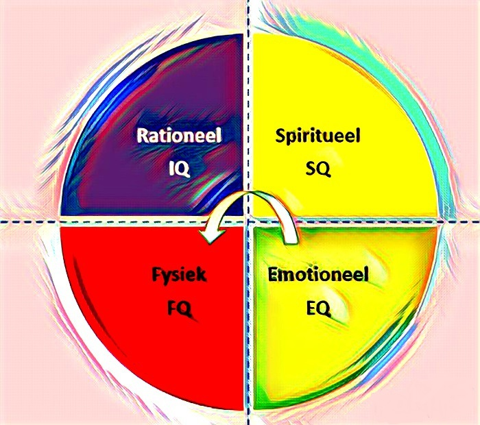 De 4 dimensies van intelligentie workshop