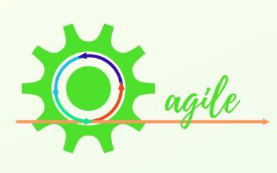 De 12 Agile principes